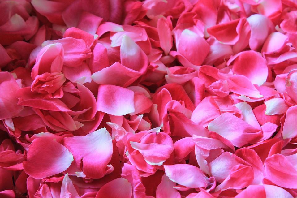 Lotion tonique purifiante : l'eau aromatisée de Rose