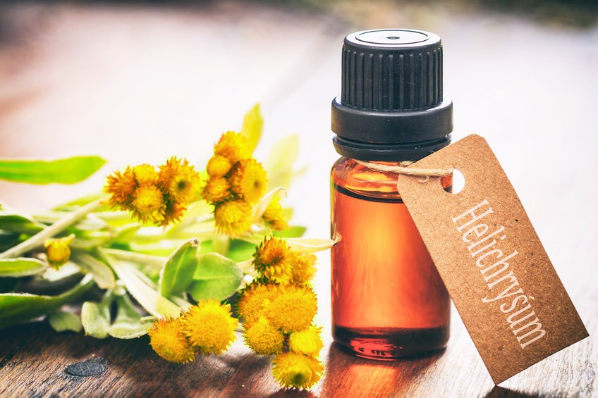 Have you Ever heard about The Flower Immortelle?